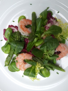 Shrimp and fava salad