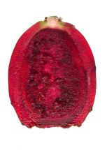 red cactus pear