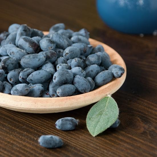 haskap berries courtesy Shutterstock