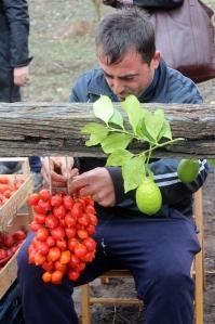 Braiding piennolo tomatoes