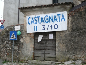 Castagnata in Agrate
