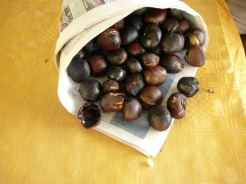 fire-roasted chestnuts in Agrate