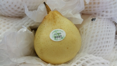 ya li pear