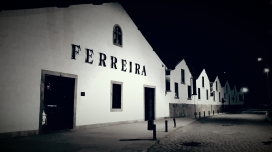 Port cellar by night